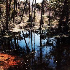 Riverbend Park in Jupiter Florida
