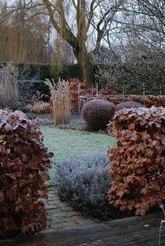 almbacken-winter-garden-hedges-shrubs-gardenista