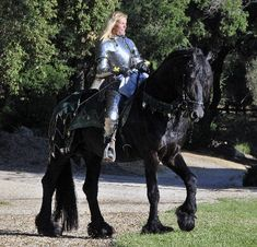 Ljibbe's Valour ~ Friesians ~ the horses of medieval knights