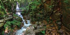 North Conway New Hampshire, Flume Gorge, Alpine Adventure, Fall Vacations, Lost River, Mount Washington, Woodstock, Travel Guide, Places To Go