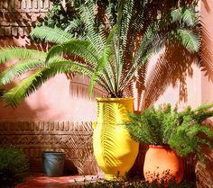 moroccan garden by itsabreeze, via Flickr