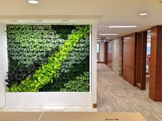 GSky Plant Systems, Inc. is a leading provider of vertical Green Walls in North America and the Middle East. Vertical Green Wall, Living Walls, Green Walls, Green Building, Building Design, Vancouver, North America, Gardens, Indoor