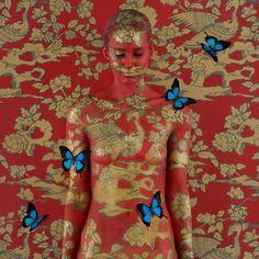 Phoenix II Emma Hack