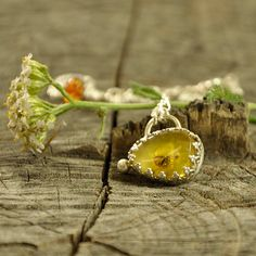 Fly high baby Baltic amber insect necklace  sterling by Ankanate