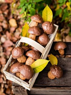 Pierniczki GRZYBKI – PRZEPIS – Mała Cukierenka Gourmet Recipes, Cookie Recipes, Dessert Recipes, Desserts, Cooking Cookies, Polish Recipes, Sweet Tooth, Stuffed Mushrooms, Good Food