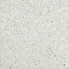 would love terrazo floors in living areas...white cement color with white marble chips