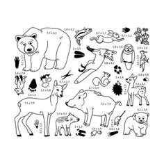 předlohy lesních zvířat Exploration, Snoopy, Comics, Children, Montessori, Notebooks, Homeschooling, How To Make, Painting