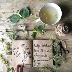 Botanical inspiratio