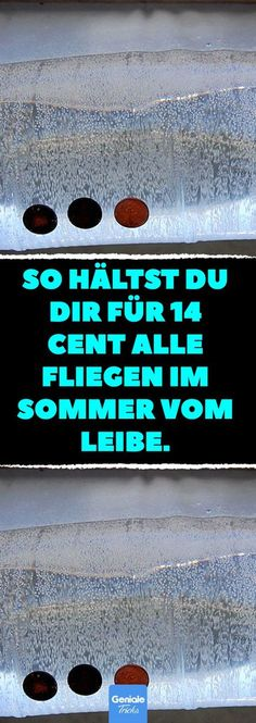 So hältst du dir für 14 Cent alle Fliegen im Sommer vom Leibe. So you keep all flies away in summer for 14 cents. With a few coins, your apartment will soon be fly-free. Diy Home Crafts, Diy Crafts To Sell, Easy Crafts, Diy Home Decor, Room Decor, Sell Diy, Decor Crafts, Crafts For Teens To Make, Diy For Teens