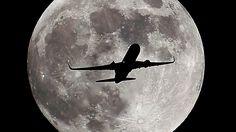 hunter's moon toronto - Google Search https://www.google.ca/search?q=hunter%27s+moon+toronto&biw=1440&bih=721&site=webhp&source=lnms&tbm=isch&sa=X&ved=0ahUKEwjLhrmDocTQAhWJKGMKHWXiCagQ_AUIBygC&dpr=1