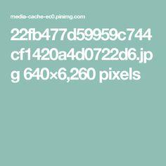 22fb477d59959c744cf1420a4d0722d6.jpg 640×6,260 pixels
