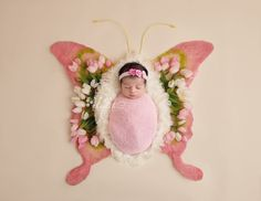 Newborn Digital Backdrop, Butterfly Pink and Green - Baby fotoshooting - # Monthly Baby Photos, Baby Girl Photos, Monthly Pictures, Newborn Pictures, Baby Pictures, Spring Newborn Photos, Foto Baby, Digital Backdrops, Pink Butterfly