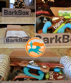 #BarkBox Cool stuff for the dogs delivered right to your door!