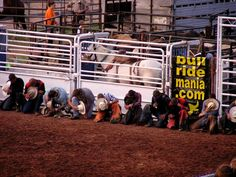 cowboys praying before a rodeo