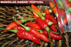 Guam boonie peppers...hot, hot