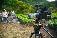 Cámara Sony F700 #producción #makingOf #documental