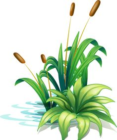 Tole Painting, Painting Tips, Fabric Painting, Idees Cate, Frog Art, Flower Art, Illustration, Concept Art, Art Projects
