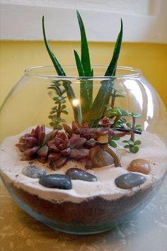 Что можно сделать из круглого аквариума, если у вас нет золотой рыбки ? Правильно, посадить кактус и другие милые растения, и наблюдать за этой красотой! #декор #интерьер #своимируками