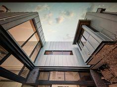 New Courtyard by POC+P #pocparchitects #sydneydesign #australianarchitecture
