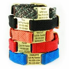 ID Tag built into the collar for Rudy!Double Braid ScruffTag™ Personalized Dog Collar - 5 Colors