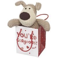Small Boofle Sitting in a Bag wth message: Your're Gorgeous xxx