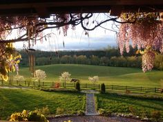 View of the Pasture from the front porch of the Log Home at Storybrook Farm Bed and Breakfast