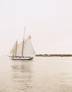 Cream Sailer.
