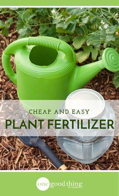 Learn how to make a great homemade fertilizer to feed your plants and flowers. You'll be surprised at how easy and inexpensive it is!
