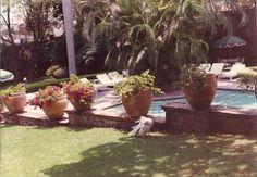 Pool & gardens, Las Mananitas hotel, Cuernavaca, Mexico.  1989