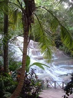 Dunn's River Falls, Ocho Rios Jamaica  Sure wish I had a video of Ron climbing this with me!