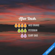 After Dusk - Essential Oil Diffuser Blend