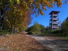 Wieża widokowa na Brzance, fot. Krzysztof Gzyl © Tarnowskie Centrum Informacji Polish Mountains, Country Roads