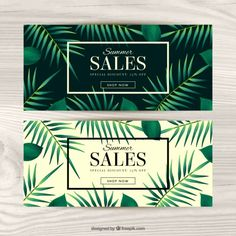 Vouchers for summer with palm trees Free Vector