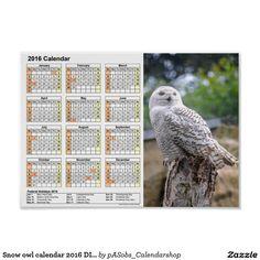 #Snow owl #calendar #2016 #DINA4 #Poster http://www.zazzle.com/snow_owl_calendar_2016_dina4_poster-228320871492501435?CMPN=shareicon&lang=en&social=true&rf=238824012663565992