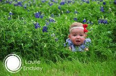 bluebonnet, texas, baby, girl, photography