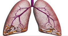 These Are The Most Powerful Methods For Cleaning Your Lungs