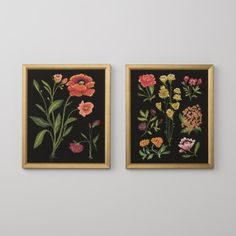 Botanical Illustrations Framed Art   Art   SchoolHouse Electric