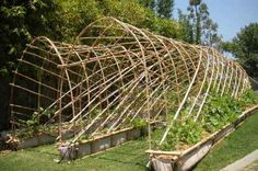It's art and a great functional trellis, support system too.