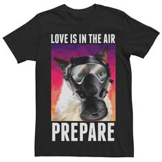 Perfect for the cynic in your life, this Love Is In the Air Grumpy Cat tee will be their new favorite tee. Funny Animal Memes, Cat Memes, Funny Cats, Funny Jokes, Grumpy Cat, Learn Astrology, All About Cats, Cat Love, Brand Names