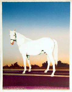 howard kanovitz.  horse