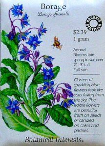 Borage Certified Organic Seeds by Botanical Interests. $2.29. The flowers are so decorative fresh or candid for pastry.. The leaves taste like cucumbers but you have to get past the hairy texture.. This plant reseeds so be careful where you plant it.. Borage officinalis. Both the leaves and the brilliant blue flowers are edible.. Always direct seed borage in fertile soil and full sun. Once establish you will have plenty for years. We have found that like Hydrangeas the...