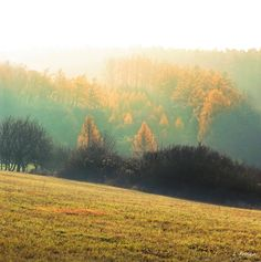 Autumn impressions - The White Carpathians