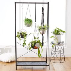 """""""Nothing breathes life into a living space like plants do! Get creative and make an eye-catching statement piece by hanging your favourite plants from our…"""""""