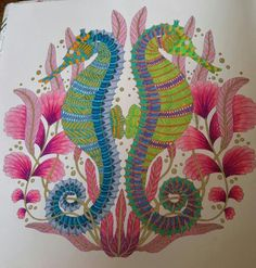 224 Best Tropical Wonderland Colouring Book Images On Pinterest