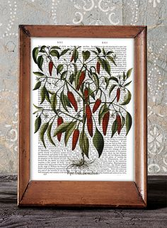 Kitchen Poster Peppers Print 3  kitchen decor by DottyDictionary