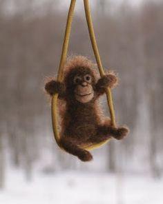 orangutan = awww; this lil' guy!