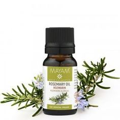 Rozmarin BIO ulei esenţial (rosmarinus officinalis), 10 ml Cosmos, Esential Oils, Good To Know, Health Benefits, Perfume Bottles, Hair Beauty, Cosmetics, Healthy, Medicine