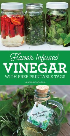 How to Make Herb Pepper FlavorInfused Vinegar with FREE Printable Hang Tags for gift giving This is a great DIY holiday gift for herb gardeners cooks chefs Print the. Flavored Oils, Infused Oils, Herb Recipes, Canning Recipes, Paleo Recipes, Homemade Bbq, Saveur, Stuffed Hot Peppers, Food Gifts