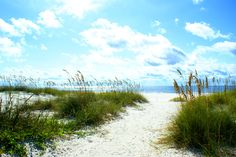 Gulf Shores, AL - wish we could be there for the summer