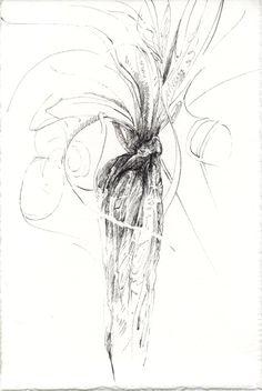 246 Seed Bank, Dandelion, Seeds, Abstract, Drawings, Flowers, Artwork, Plants, Summary